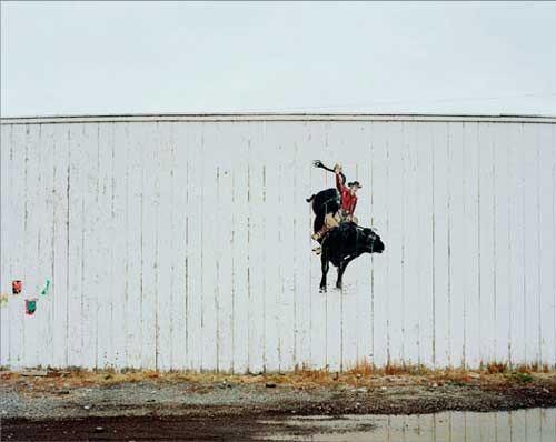 Will teacy Rodeo Wall
