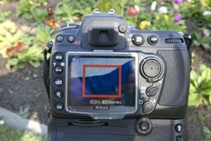 LiveView-Scharfstellung, Nikon D300: Erst in der Pixelansicht wird klar, dass der Fokus auf dem entferntesten Blütenblatt liegt.