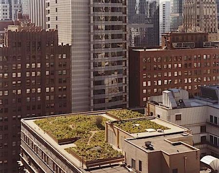 js_GardenRoof.jpg