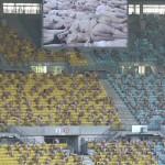 Tunick-Shooting mit Nackten im Wiener Ernst-Happel-Stadion, Austragungsort des Euro 2008-Finals. (Bild Keystone / Lilli Strauss)