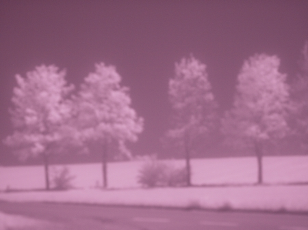 Infrarot 850 nm ohne Fokus W.D.Roth