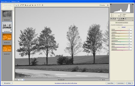 Adobe Camera Raw Graustufenanpassung W.D.Roth