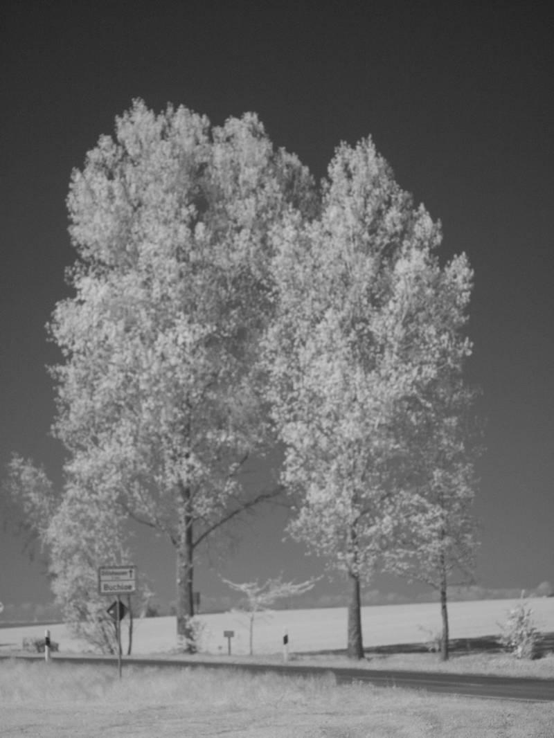 infrarot-715-nm-sw-wdroth.jpg