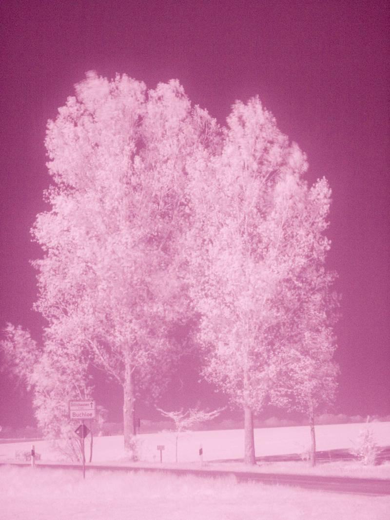 infrarot-850-nm-original-wdroth.jpg