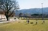 Spielfelder - Landschaft des Amateur-Fussballs in Europa» Hans van den Meer Oppede, Fr