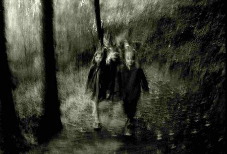 Kati Halle: Mystischer Waldspaziergang