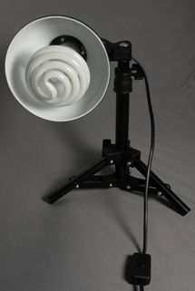 Somikon Fotolampe