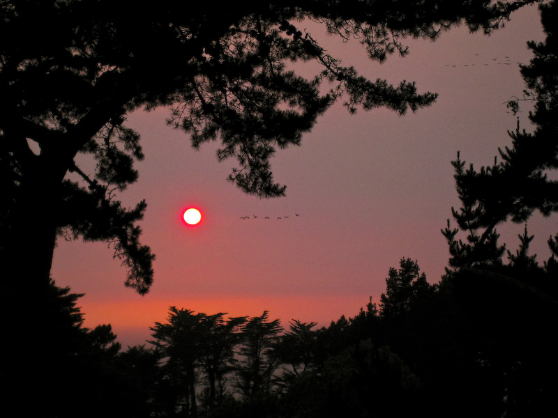 Sonnenuntergang Zehn Einfache Tipps Fokussiertcom