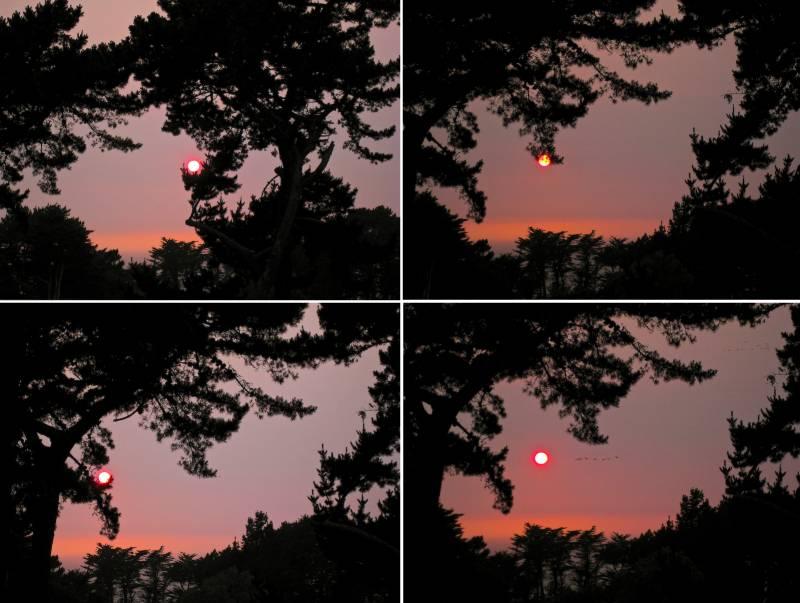 Viermal der gleiche Sonnenuntergang: Steh- oder Hängelampe, das war die Frage... Am Ende gewannen die Pelikane (© P. Sennhauser)