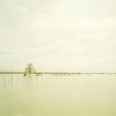 Elger Esser: Saône, 2001/© VBK, Wien 2008