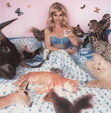 Sophie Calle: Days Under the Sign of B, C & W, 1998       Collezione        Raffaella e Silvestro Galioto