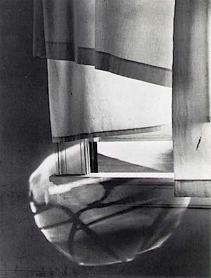 Minor White: Windowsill Daydreaming, 1958