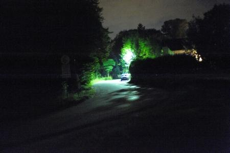 Die erwähnte Straßenlaterne mit ihrem auf Fotos eher grünlichen Quecksilberdampf-Leuchtstofflicht, hier hinter Bäumen.
