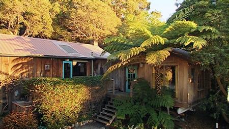 Wildcat Hill bei Carmel an der Pazifikküste. Hier lebte Edward Weston bis zu seinem Tod. (Bild: Norddeutscher Rundfunk / Parnass Film)