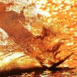 wakeboarder.jpg