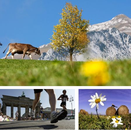 Wildhaus, Schweiz; Berlin, Deutschland; Oberursel bei Frankfurt am Main, Deutschland. (Bilder Keystone)