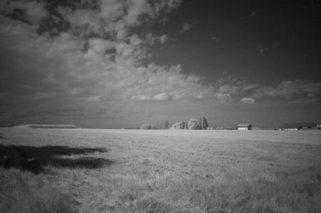 Bild: W.D.Roth