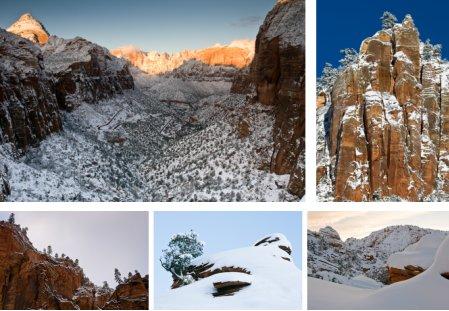 Zion Nationalpark, im Westen Utahs. Klick für Vollbild. (© 2008 Peter Sennhauser)