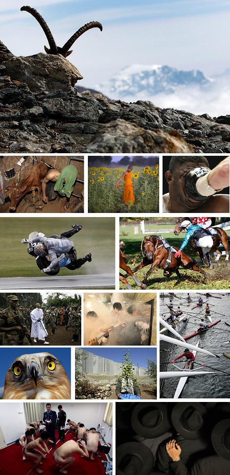 Die besten Newsbilder von 2008. Klick für Vollansicht. (Keystone)