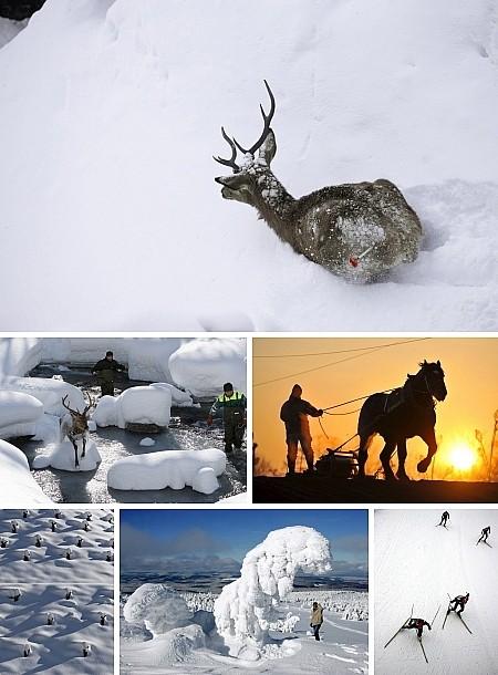 Graubünden, Schweiz (1,2,4); Hokkaido, Japan; Brocken, Schierke, Deutschland; Liberec, Tschechien. Klick für Vollansicht (Bilder Keystone)