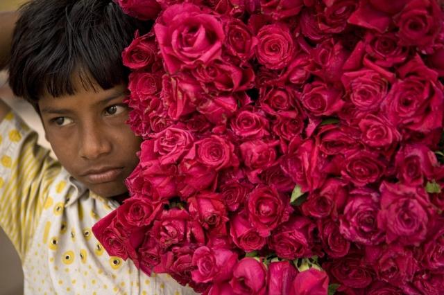 Asish, der Blumenhändler (Keystone)