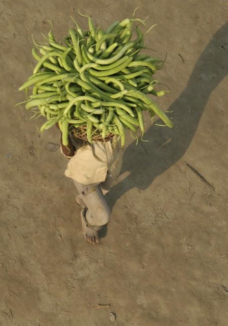 Indien Gurken (Keystone)
