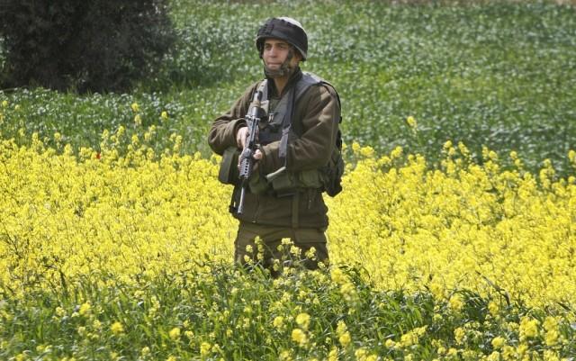 Israelischer Soldat im Blumenfeld (keystone)