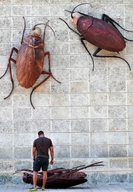 Kuba Kunst (keystone)
