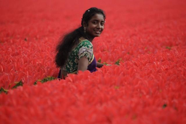 Tamilin in den Tulpen (Keystone)