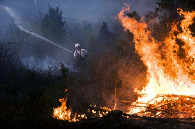 Schwedischer Waldbrand (Keystone)