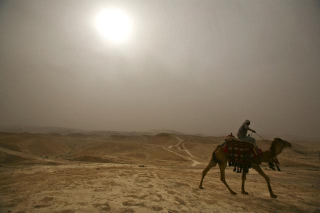 Palästinenser auf Kamel (Keystone)
