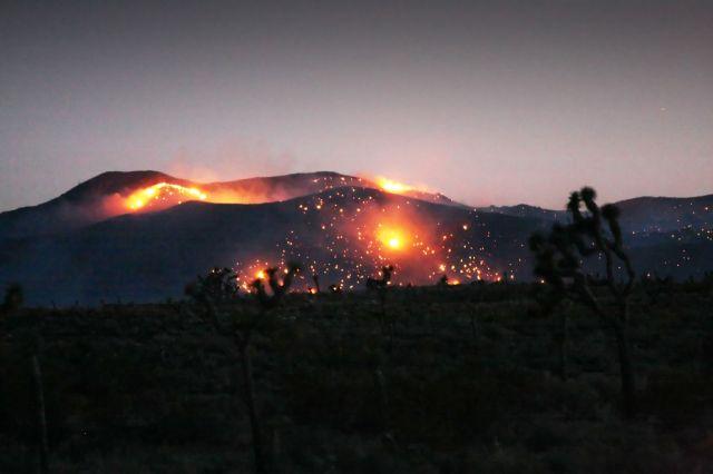 Brennender Joshua Tree National Park (keystone)