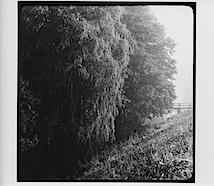Lilienthal, An der Wörpe, 1957; © Arno Schmidt Stiftung Bargfeld