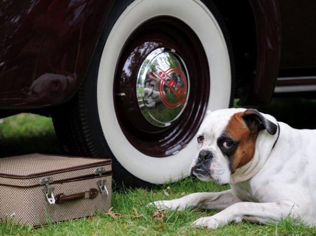 Klitschko der Boxer spiegelt sich in einer Radkappe. (keystone)