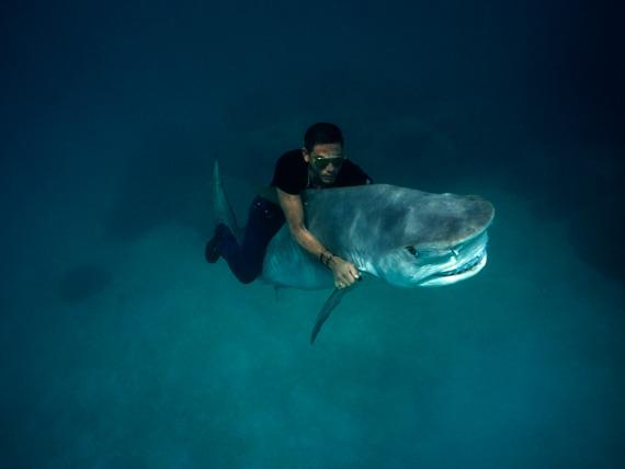 Pierre Winther: Der auf dem Hai reitet