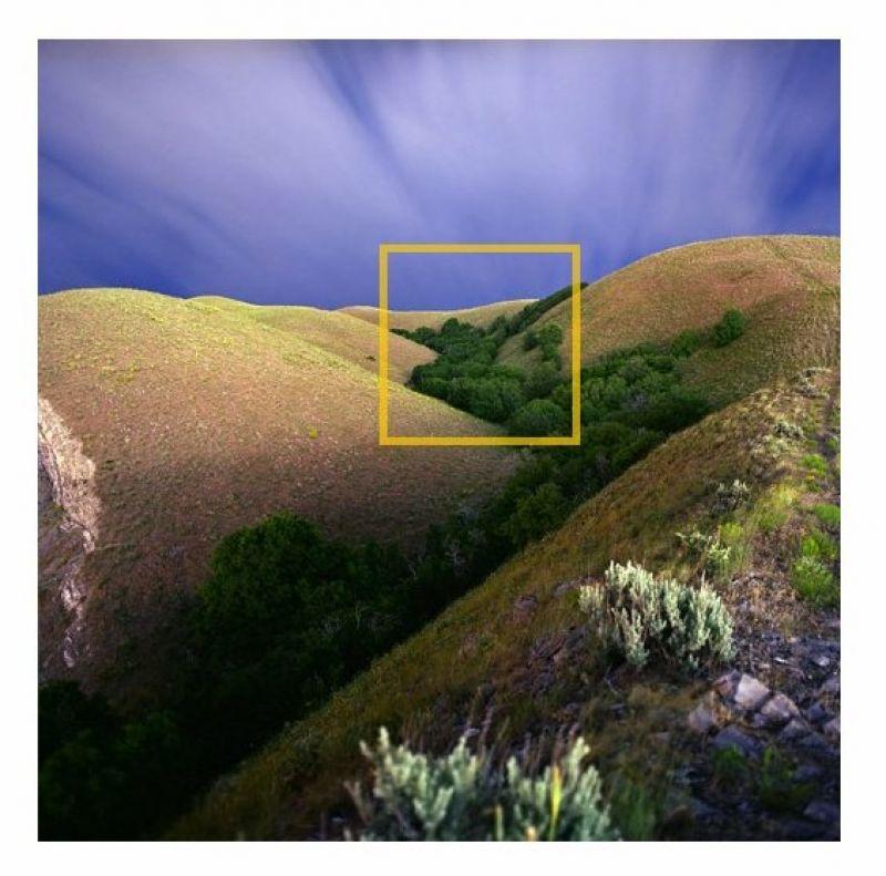 Unendliche Fotografie: Sich in Bildern verlieren
