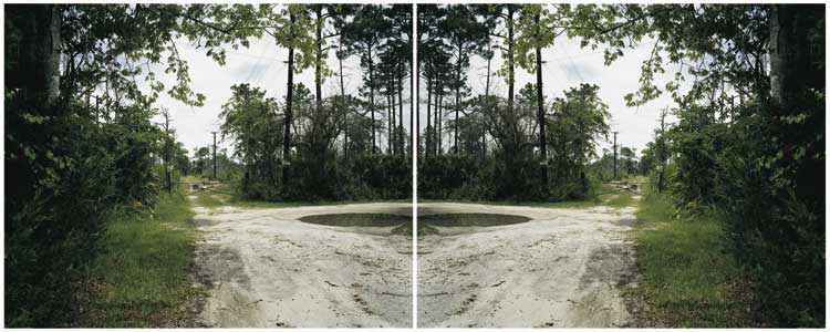 Ann Shelton: Trespass, (After Monster), Daytona Beach, Florida, USA, 2001. Ausstellung Absenzen. Courtesy of the artist