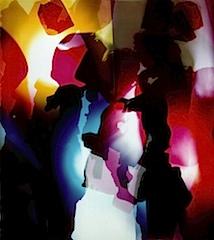 Natalie Ital - aus der Serie Bio Box Burger, 2005, Fotogramm