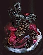 Foto Ingo Mittelstaedt, capsules, www.guteaussichten.org