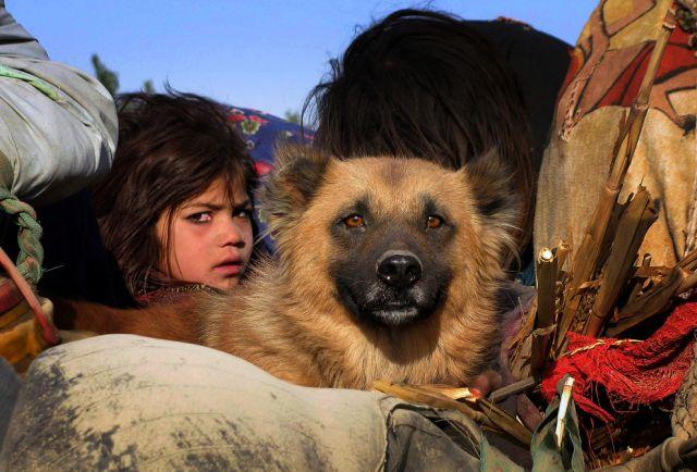 Mädchen mit Hund (keystone)