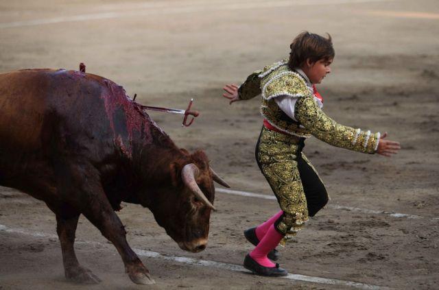 Kleiner Stierkämpfer (keystone)