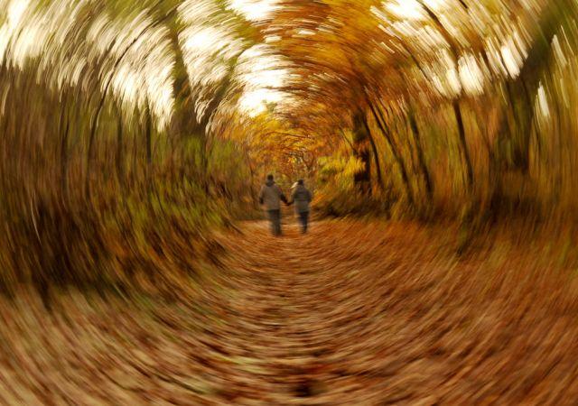 Herbst bei Budapest (keystone)