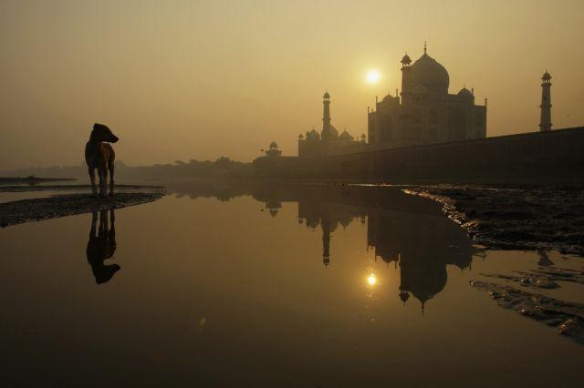 Streuner am taj Mahal (keystone)