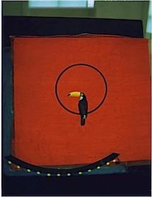 Sarah Moon: Le Toucan, 1998
