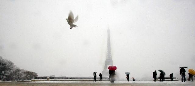 Weisse Taube in weissem Paris. (keystone)