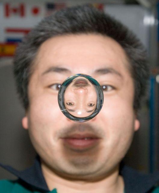 Koichi Wakata (keystone)
