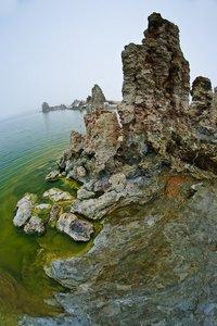 Ablagerungen am Seeufer. (Foto © PS)