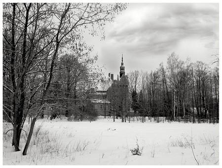 Leserfoto: Klick für Vollansicht (© Norbert Reinsch).