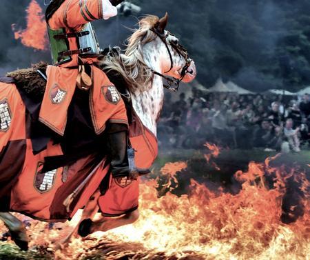 Pferdeaction: Zu viel Absicht
