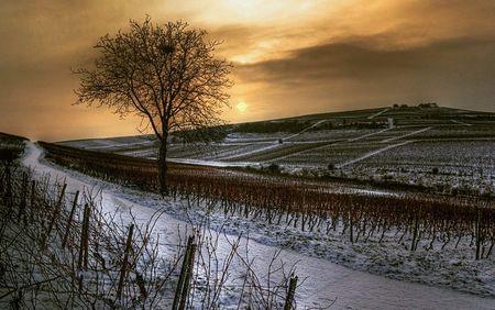 Leserfoto: Klick für Vollansicht (© Thomas Renner).